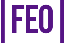 Review of FEO's 2015-2020 Strategy